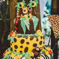 Дикие Сафари на детском дне рождения
